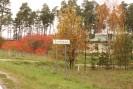 Šumskas